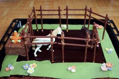 Nele's Pferdekoppel.jpg